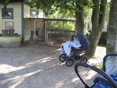 Kaninhuset med dess lilla utebur syns i bakgrunden av barnvagnarna